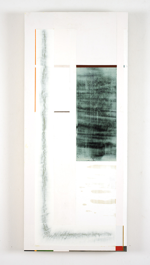 Joan Waltemath Torso/Roots paintings oil, graphite, pewter, interference, glimmer and florescent pigment on honeycomb aluminum panel