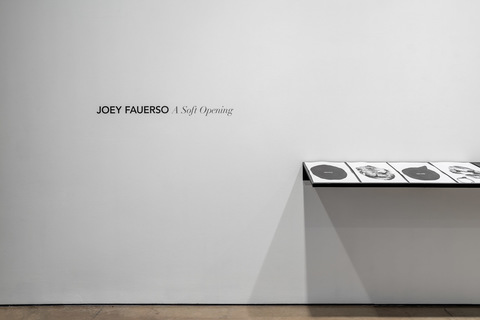 Joey Fauerso A Soft Opening