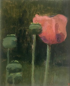Chatwood Poppy Oil Sketch