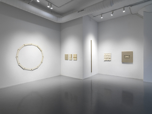 John Fraser installation views