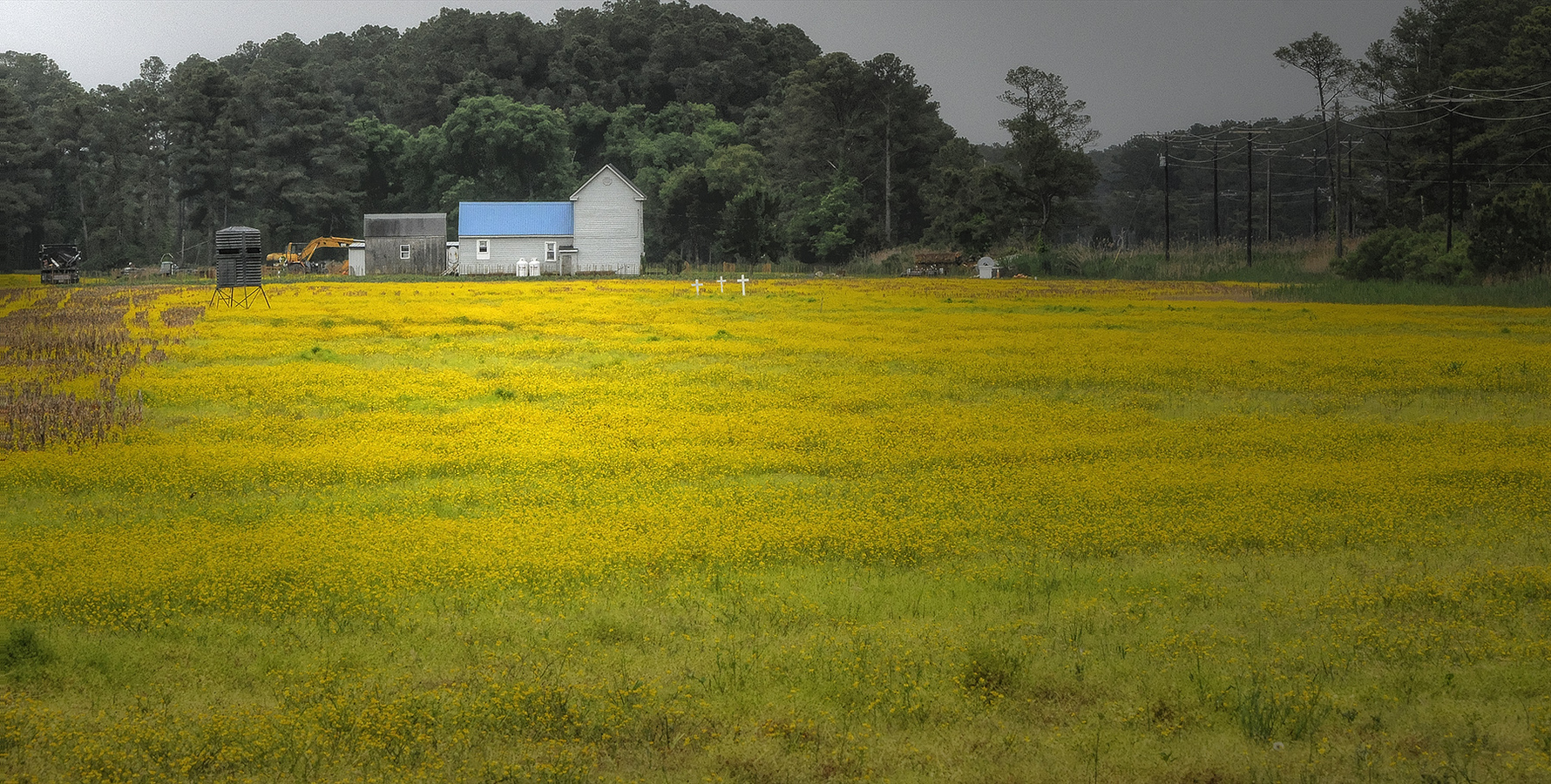 Landscapes Gallery Gold Field, Crosses, and Blue Roof  ©