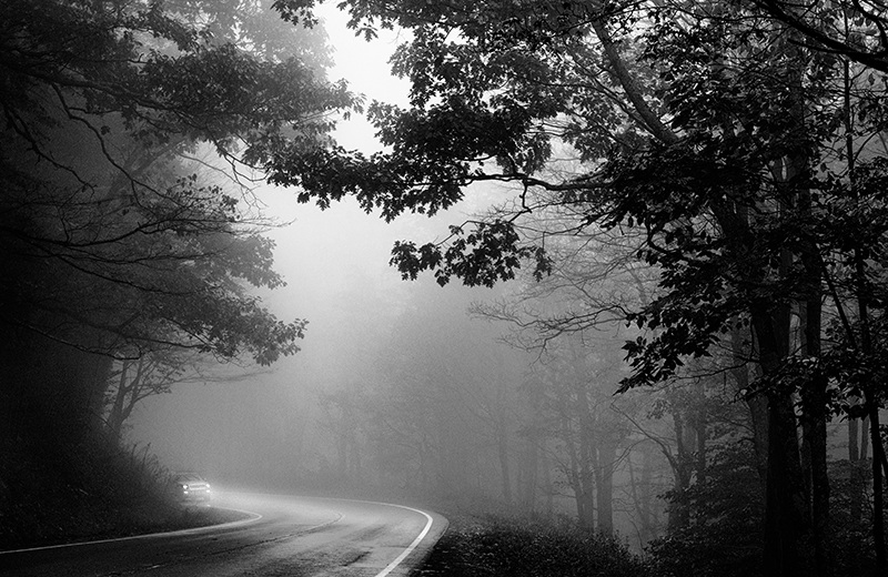 Theme and Variations on the Foggy Woods Lonely Road  ©