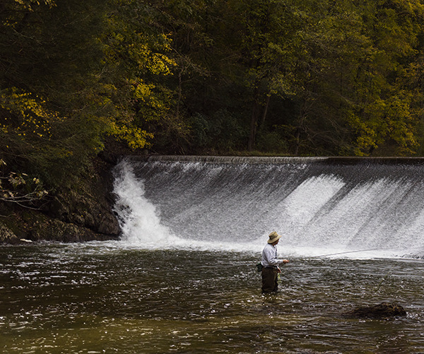 Landscapes Gallery Fly Fishing 4:  Trolling the Line  ©