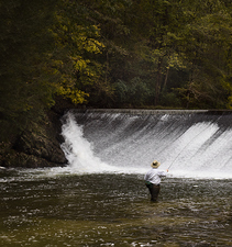 Fly Fishing 5:  Fishing the Foot of the Dam  ©