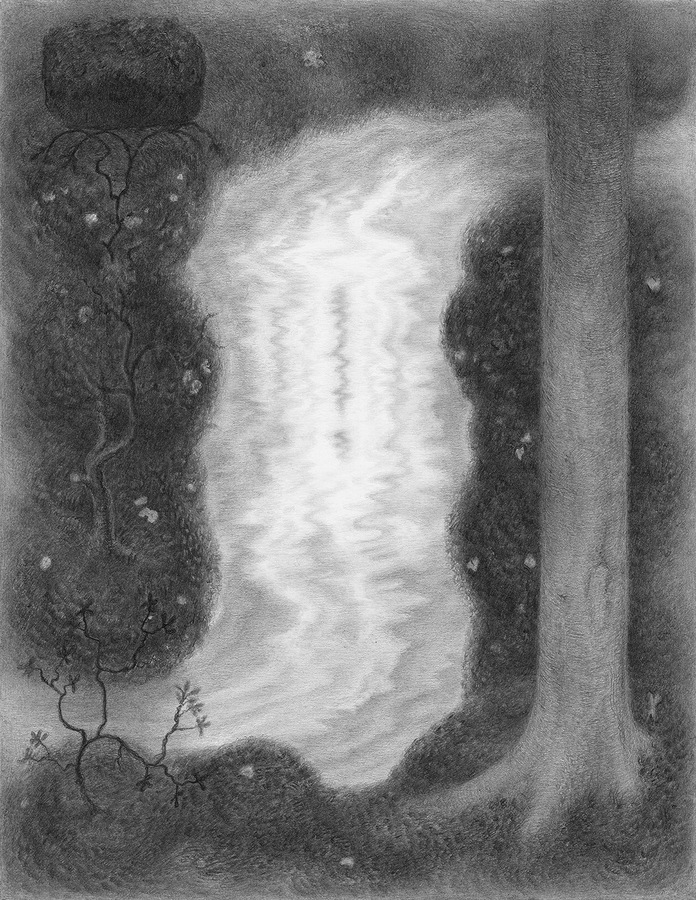 Paper Garden, 2017 Glimpse, 2017, graphite on paper, 10.5 x 8 inches