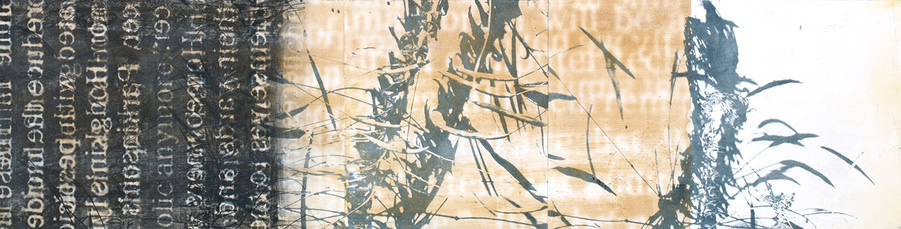 Enigmatic Affinities monoprinted lithograph