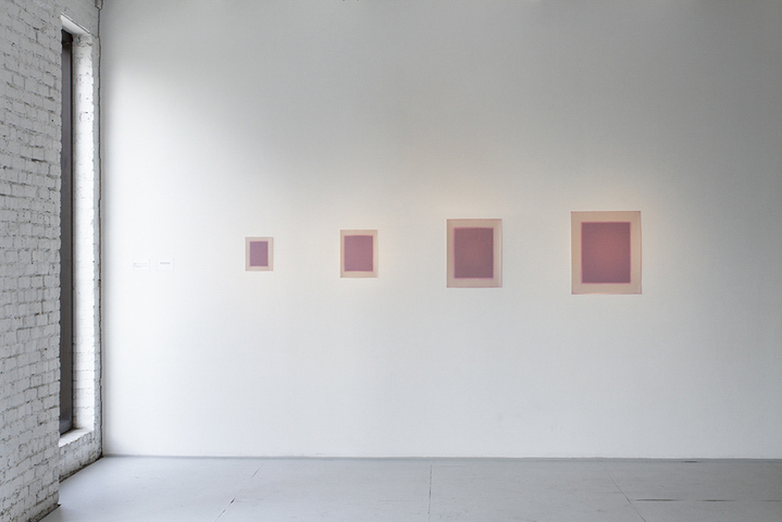 Julie Weber Uncertain Objects 4 sheets of unfixed chromogenic paper, embossed, partially washed