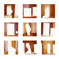 Julie Weber Undisclosed Typologies 9 found chromogenic prints, partially removed emulsion