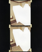 Julie Weber Undisclosed Typologies found chromogenic contact print, partially peeled