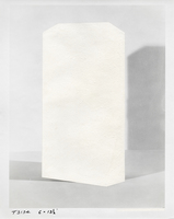 Julie Weber Undisclosed Typologies found gelatin silver print, partially peeled
