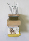 CONSTRUCTIONS Wood, spackle, acrylic, plaster, wire,