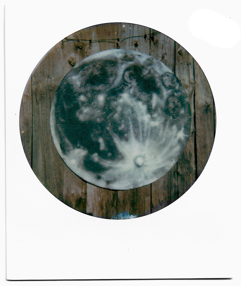 Moon: Quilt, Bleach Lifts, Polaroids Farm Moon Polaroid