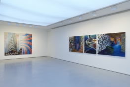 KANISHKA RAJA Against Integration 2010 Installation View
