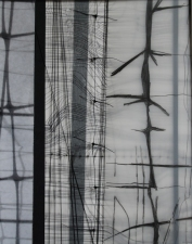 Karen V. Neems Grid Series Photograph, graphite on mylar, string, fencing