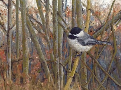 KARIE O'DONNELL Oils Chickadee