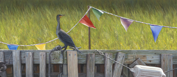 KARIE O'DONNELL Oils Double-crested Cormorant