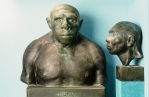 KATARINA MATIASEK WANTED: NEANDERTHAL MAN. 150 Years of Evidence exhibition view