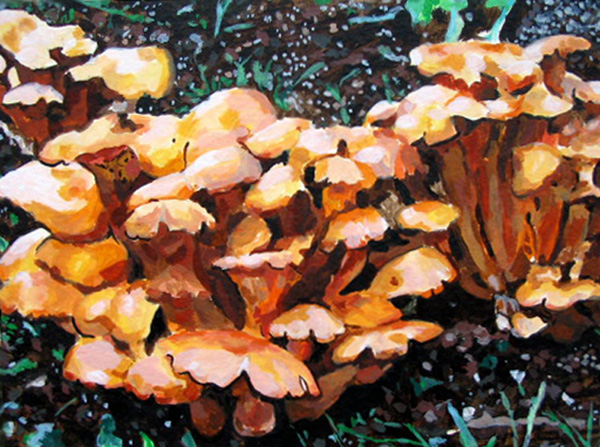 Paintings on Paper Mushrooms