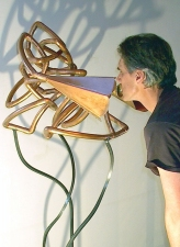 KATHLEEN ANDERSON Emotional Prosthetics Copper tubing