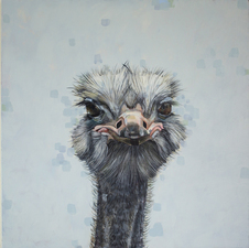 KATHY FEIGHERY Animal Series Acrylic on Panel