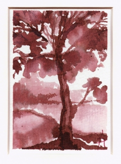 Kathy Hirshon Paintings ink on watercolor paper