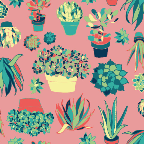 Surface & Textile Design Succulents
