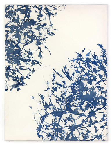 Katie M Westmoreland Light Shape Shadow Form cyanotype solution, cotton fabric on stretcher bars