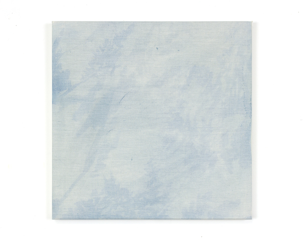 Katie M. Westmoreland Textile Paintings cyanotype solution, walnut ink, bleach, cotton fabric on stretcher bars