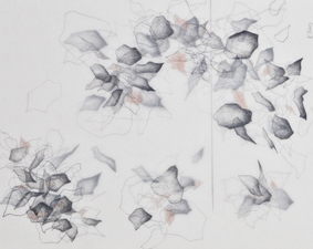 Katlin Evans Drawings graphite on dura-lar with color pencil