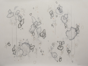 Katlin Evans Drawings Graphite on Dura-Lar