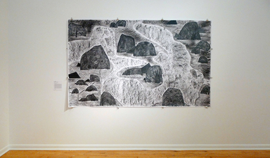 "December 2016 at the end of group exhibit at Paul Robeson Gallery at Rutgers University in Newark, NJ. Pictured here is ""Rocky Rocks and Peeking Polygons""(2016); charcoal and graphite on paper; 60 inches x 100 inches"