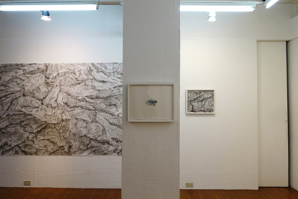 Drawing Abundance - solo exhibition at West Gallery, Quezon City, Philippines, August-Sept 2018 (photo credit by West Gallery)