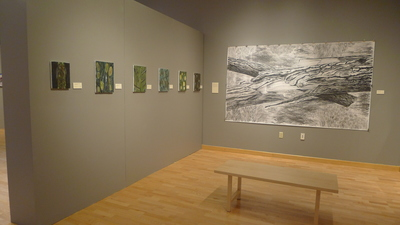 installation shot for Synthesizing Nature group show at View Arts in Old Forge, NY
