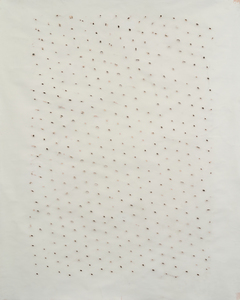 Kerry Downey Grids, nets and their holes