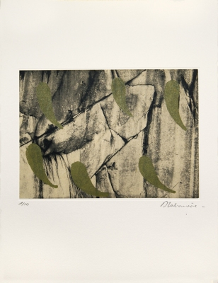 Dominique LABAUVIE Prints Photogravure and Wood cut printed on Kitakata chine collé to Somerset