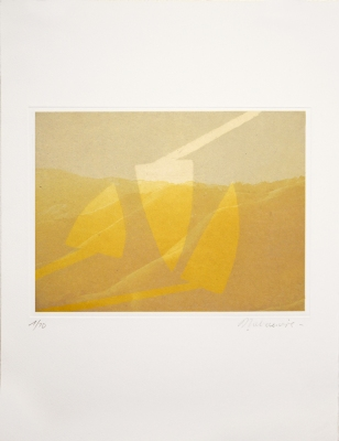 Dominique LABAUVIE Prints Photogravure and woodcut printed on Kitakata chine collé to Somerset