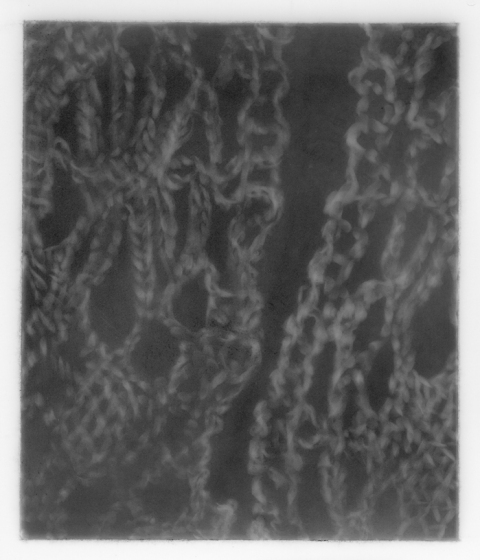 Leigh Ann Hallberg Somatic Memories Graphite on Mylar
