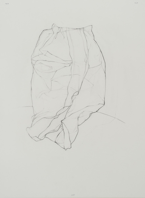 Leigh Ann Hallberg Bags of America, Artist Book Graphite on mylar