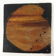 "Laura Bell Selected ""Books"" series Acrylic and charcoal on found wood"