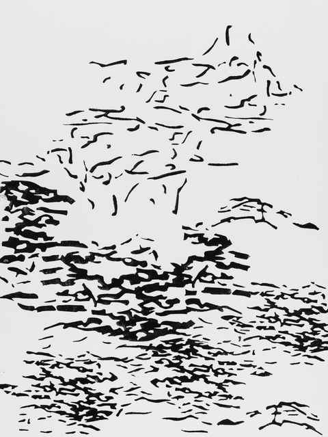 Black and White Works on Paper Taking Flight 101