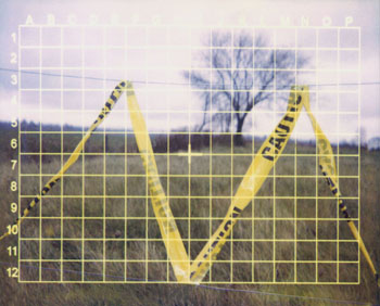 laura p krasnow grid_lock Polaroid, Digital Photography