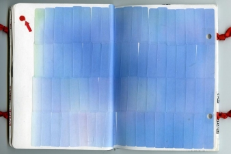 laura p krasnow Sketchbook 2012 Mixed Media
