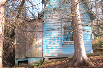 LAURA SUE KING house paintings spray paint on house
