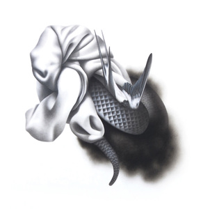 Lauren Yandell drawing Graphite, liquid graphite & charcoal on paper.
