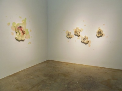 lauren yandell installation | painting