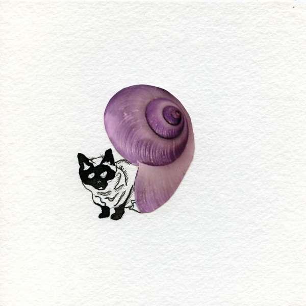 leah floyd Wolves in Shells are Crueler than Stray Ones collage and ink