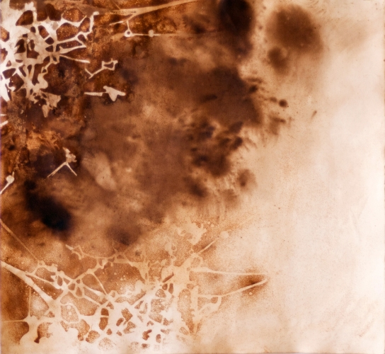Lee Emma Running Water Catalyst  Rust and walnut dye on paper