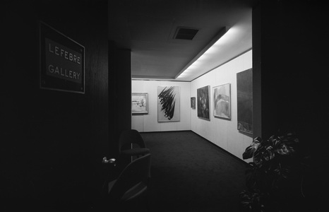 Lefebre Gallery Gallery Photographs
