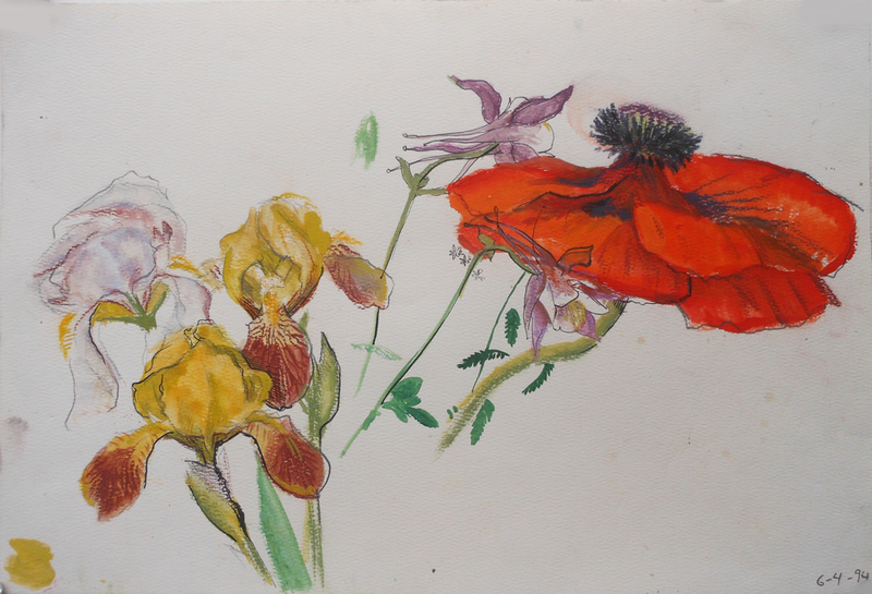 FLORALS Poppy and Irises #2
