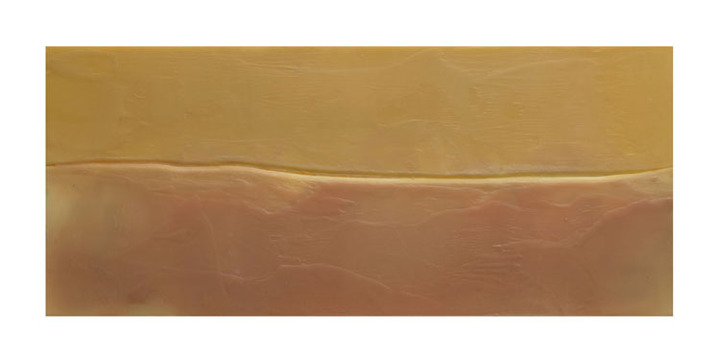Leslie Ford 40 days 40 nights pigmented beeswax on museum board